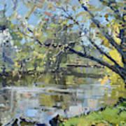 Ellicott Creek Park Art Print