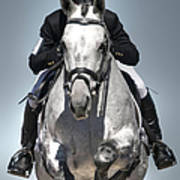Equestrian Jumper Art Print