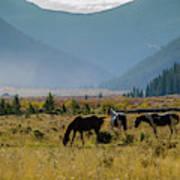 Equine Valley Art Print