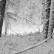 Evening Snow Art Print