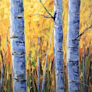 Fall Aspen Iv Art Print