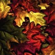 Fall Is On The Ground Art Print