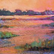 Fire Marsh Art Print
