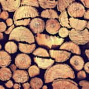 Firewood Logs Art Print