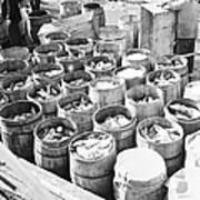 Fish For Sale In Barrels At The Fulton Art Print