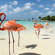 Flamingos On The Beach Art Print