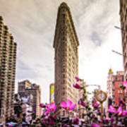 Flatiron And Flowers Art Print