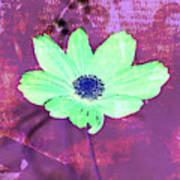 Flower 2918 Art Print