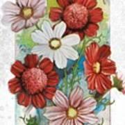 Flowering Cosmos Seed Packet Art Print