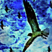 Flying Seagulls Art Print