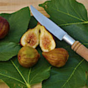 Fresh Figs Art Print