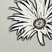 Gerbera Flower Shape Art Print