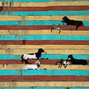 Goats Resting On The Tulsi Ghats Art Print