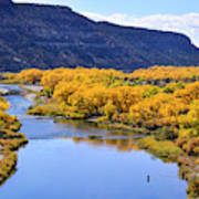 Golden Autumn Trees San Juan River Landscape Art Print