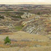 Golden Dakota Prairie Reverie Art Print