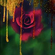 Golden Moments Of A Garden Rose Art Print