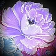 Gorgeous Rose In Purple  Art Print