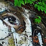 Graffiti On West 107 Street Art Print