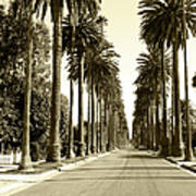 Grayscale Image Of Beverly Hills Art Print