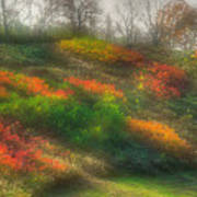 Ground Bouquet No. 3 - Somewhere In Greene County, Pennsylvania - Autumn Art Print
