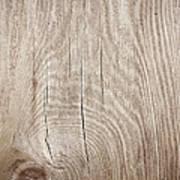 Grunge Wood Textured Background With Art Print