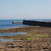 harbour at Seahouses on hazy summer day Art Print