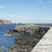 harbour wall and cliffs at St. Abbs, Berwickshire Art Print