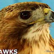 Hawks Mascot 3 Art Print