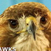Hawks Mascot 4 Art Print