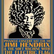 Hendrix Pinnacle Concert Art Print