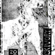 Horse Front 3 Art Print