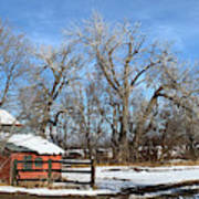 Horse Loafing Shed After Snow Art Print