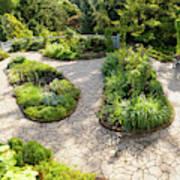 If Gulliver Had A Herb Garden Art Print