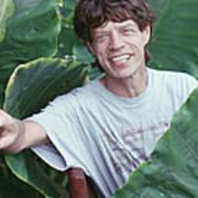 Jagger On Holiday Art Print