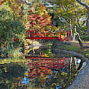 Japanese Garden Red Bridge Reflection Art Print