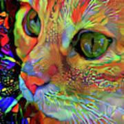 Koko The Orange Cat Art Print