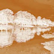 Lake Reflections In Brown Art Print