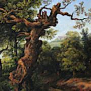 Landscape After A. Van Everdingen Art Print