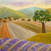 Lavender Sundown Art Print