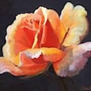 Lesla's Rose Art Print