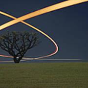 Light Trails Around Tree Art Print