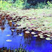 Lilies On Blue Water Art Print