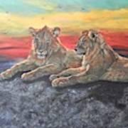 Lion Sunset Art Print