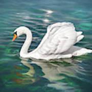 Lone Swan Lake Geneva Switzerland Art Print