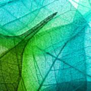 Macro Leaves Background Texture Art Print