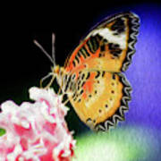 Malay Lacewing Butterfly I Art Print