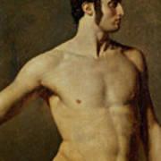 Male Torso. Artist Ingres, Jean Auguste Art Print