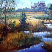 Marsh Living Art Print