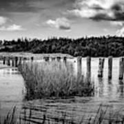 Mccormack's Beach Provincial Park, Black And White Art Print
