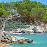 Mediterranean Landscape In Menorca Art Print